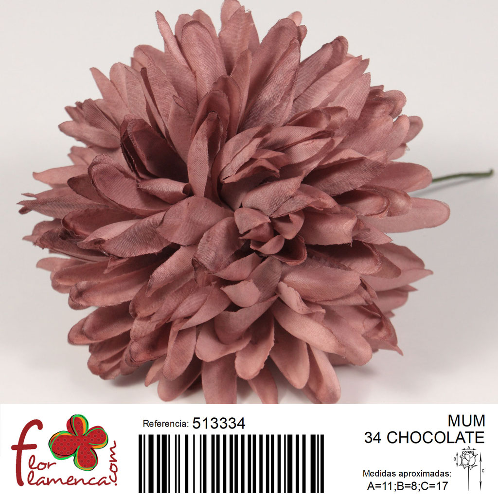Crisantemo Flor Flamenca modelo Mum color chocolate 34