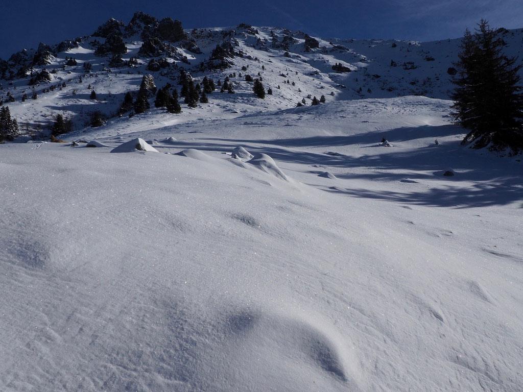 Juste la beauté. Gouttelettes d'eau devenues cristaux de neige enveloppent nos montagnes !