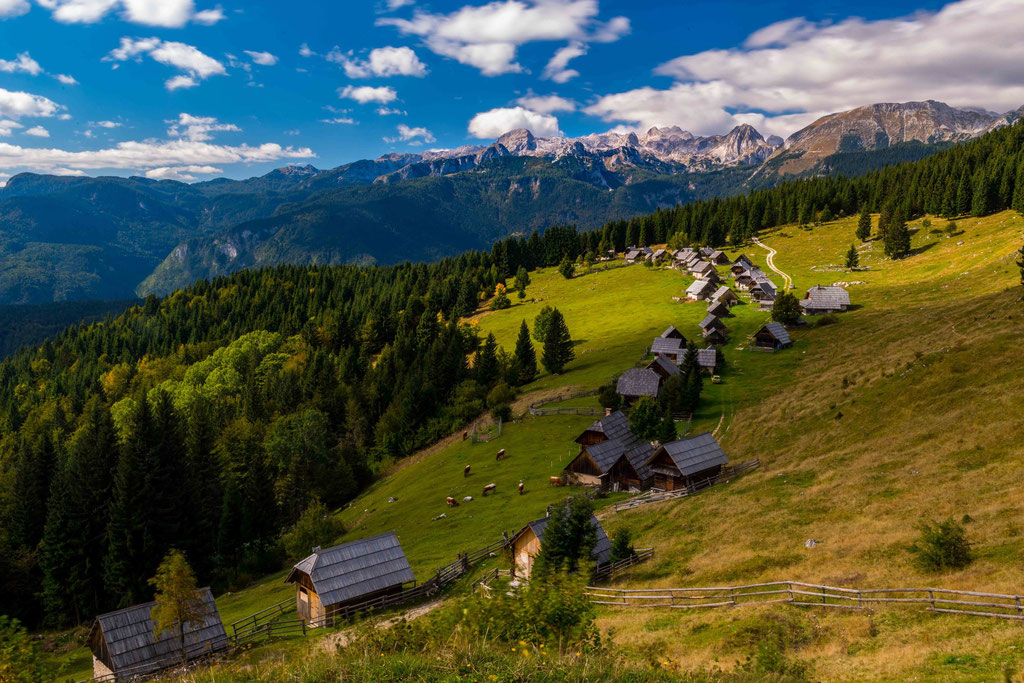 Planina Zajamniki (Planina = Alm)