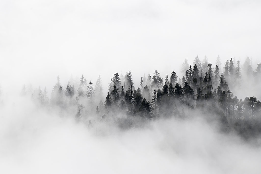 Nebellandschaft in den Alpen