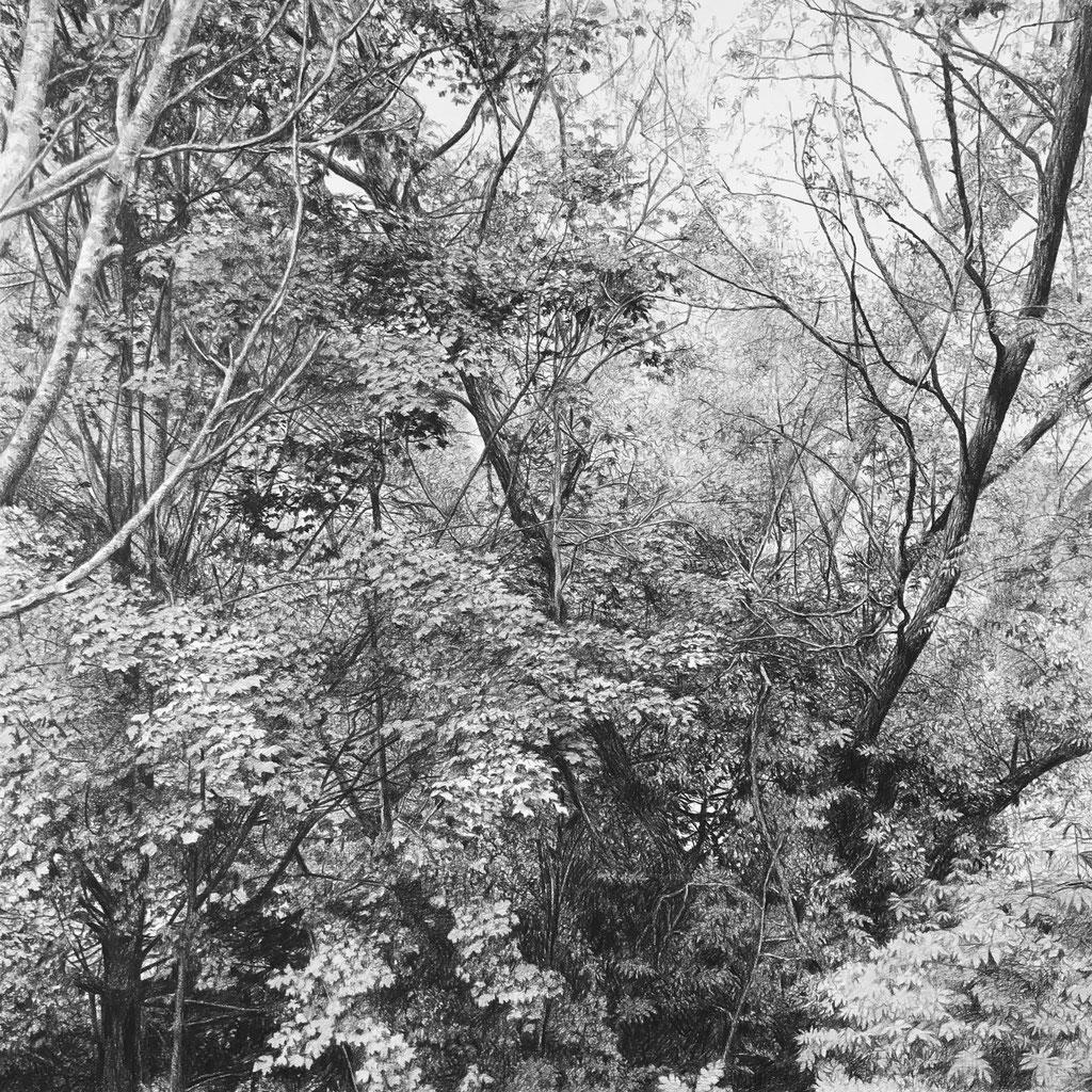 Lápiz negro sobre papel, 80 x 80 cm. Colección particular.