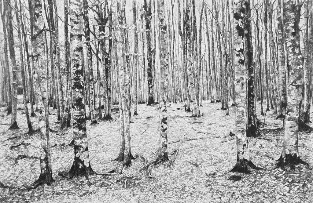 Lápiz negro sobre papel, 80 x 53 cm. Colección particular.