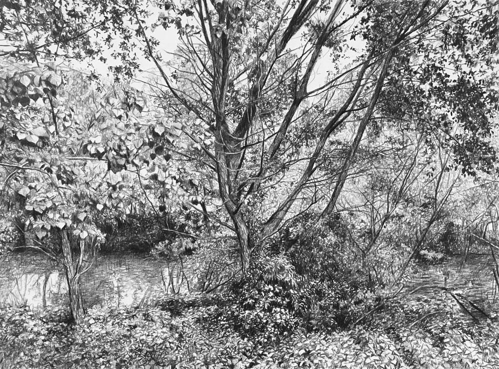 Lápiz negro sobre papel, 30 x 22 cm.