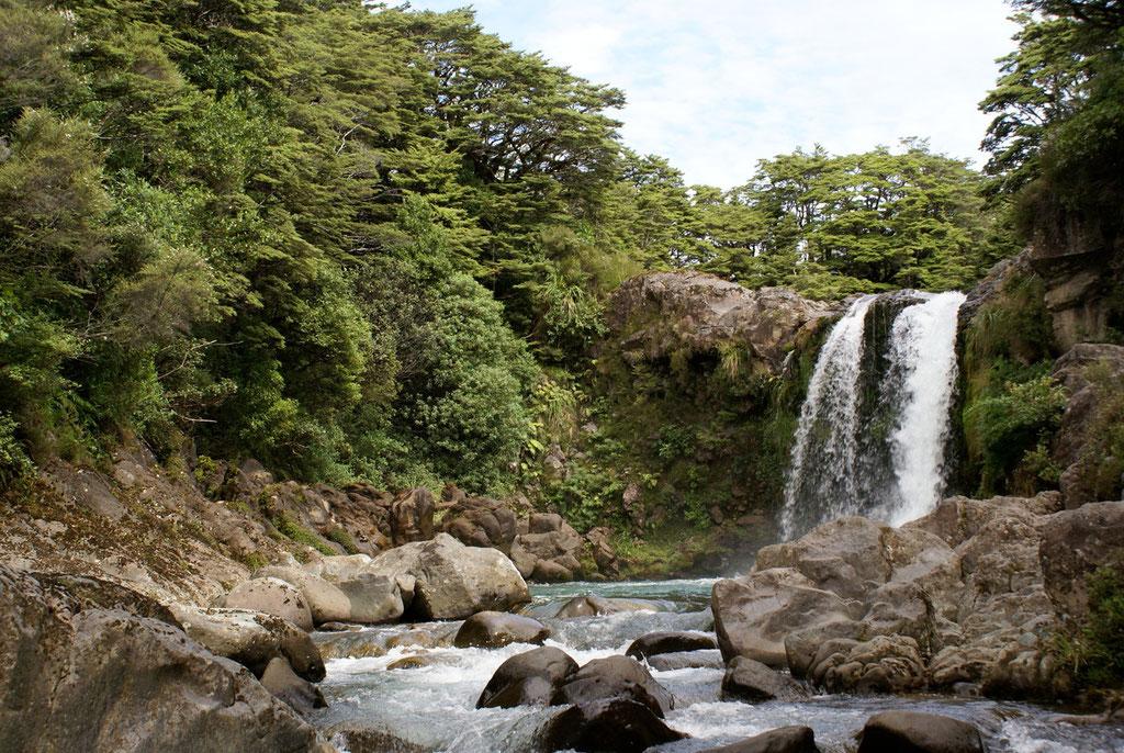 WASSERFALL IM TONGARIRO NT. PARK