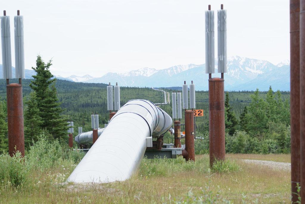 1968 wurde in der Pruhoe Bay Oel entdeckt.Somit wurde die Trans Alaska Pipeline gebaut.
