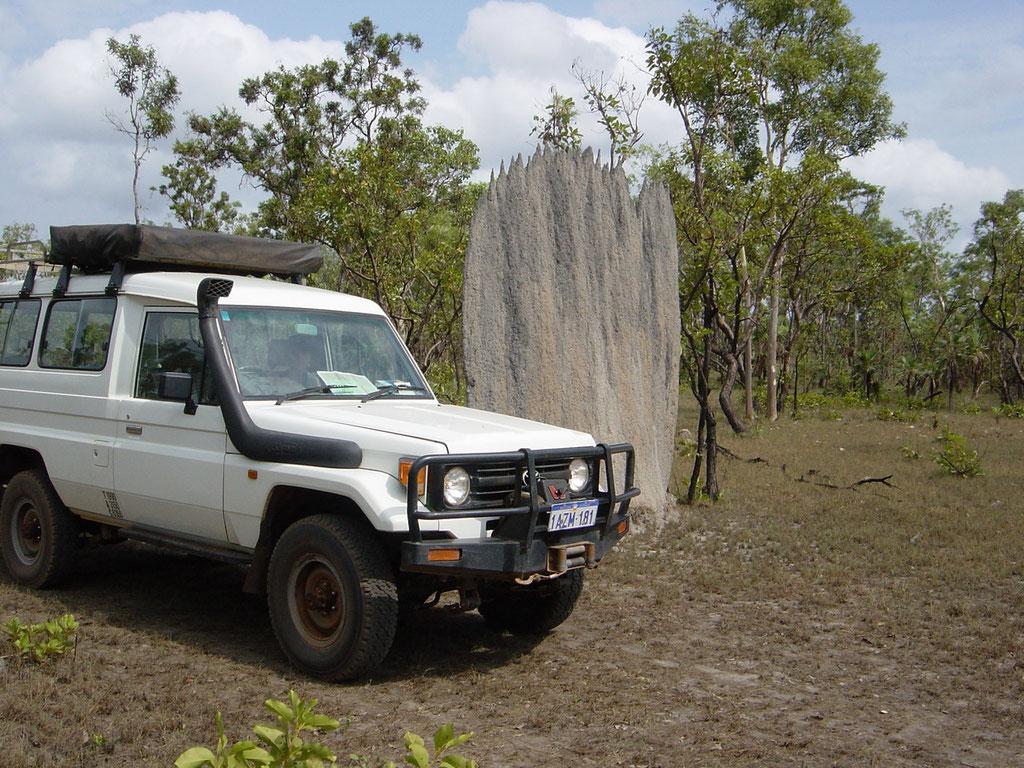 Magnetischer Termitenbau im Litchfield Nt. Park