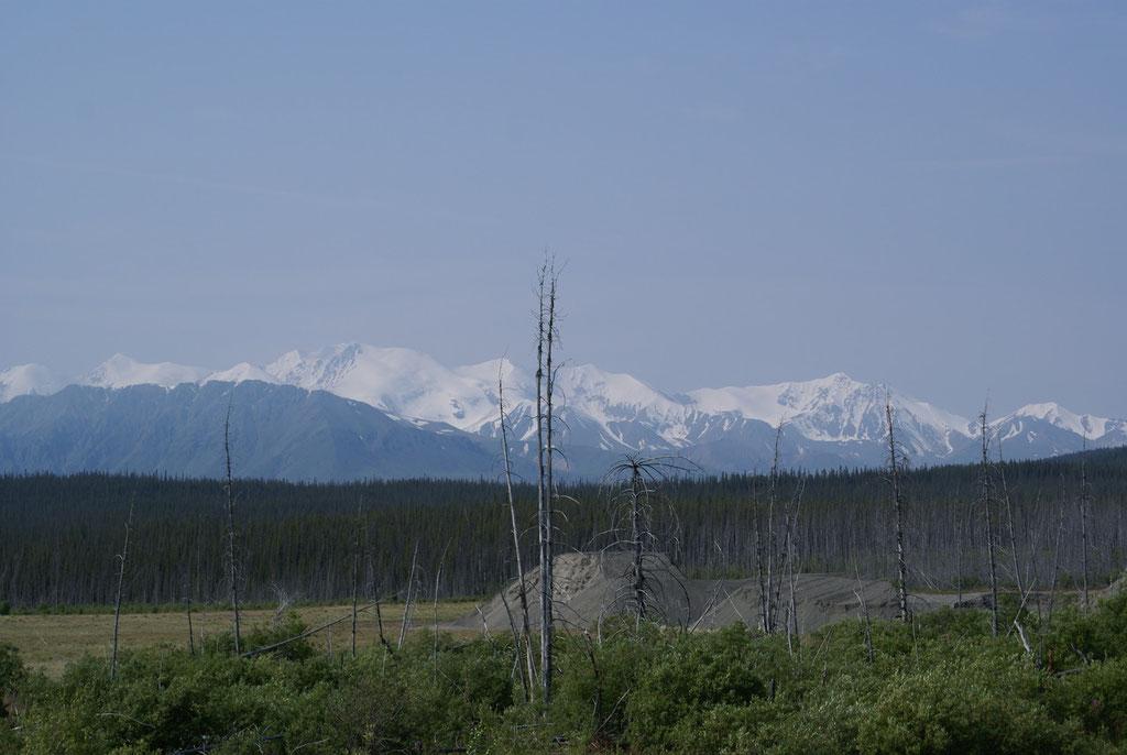 Coast Mountains Yukon