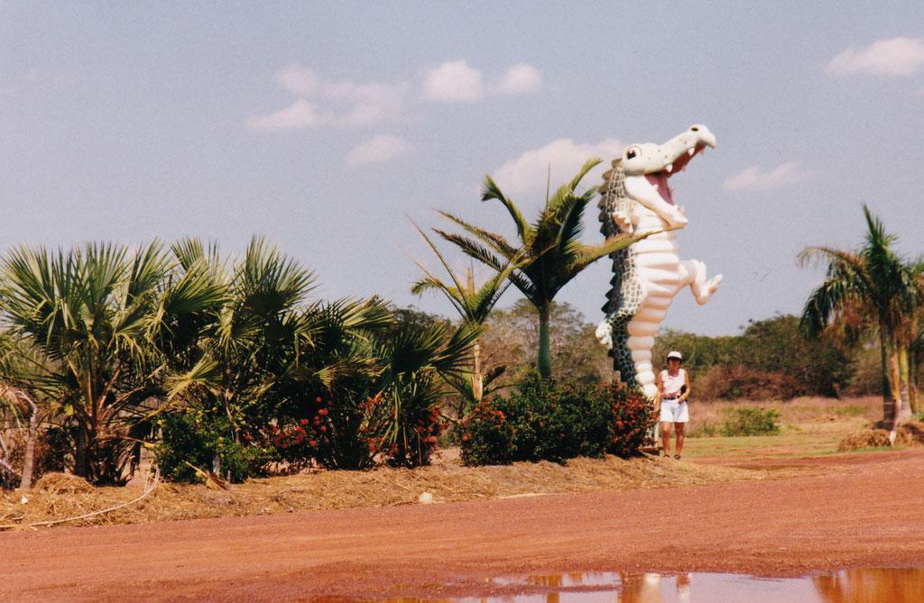 CROKCODILE JUMPING IM KAKADU NT.PARK BEIM ADELAIDE RIVER