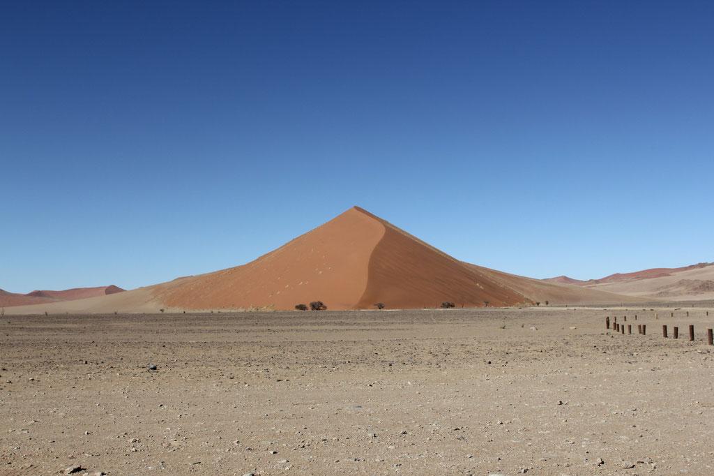 Die Dünen sind bis zu 300 Meter hoch und sehr anstrengend zu besteigen.