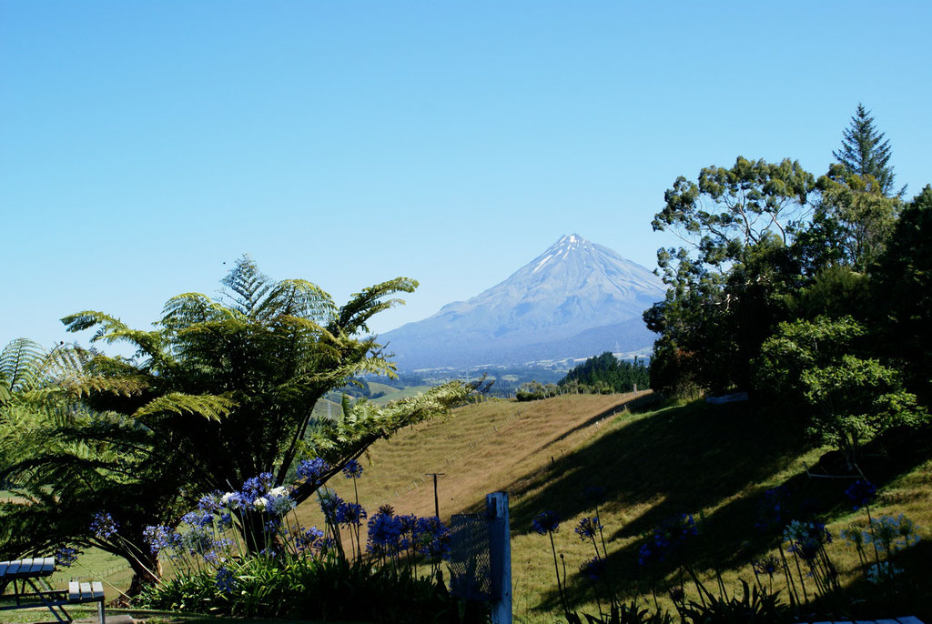 Der Mt. Taranaki mit 2518m bei Stratford