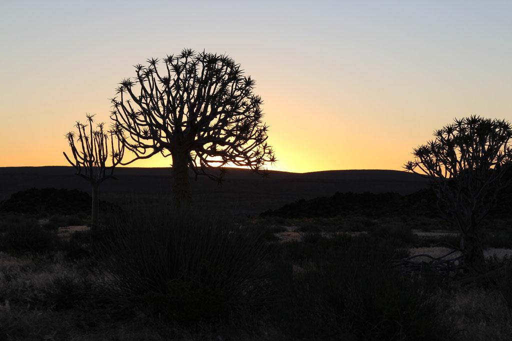 Sonnenuntergang bei der Canyon Lodge