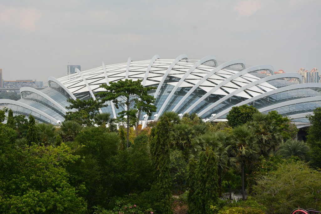 CLOUD FOREST UND FLOWER DOM IM GARDEN OF THE BAY