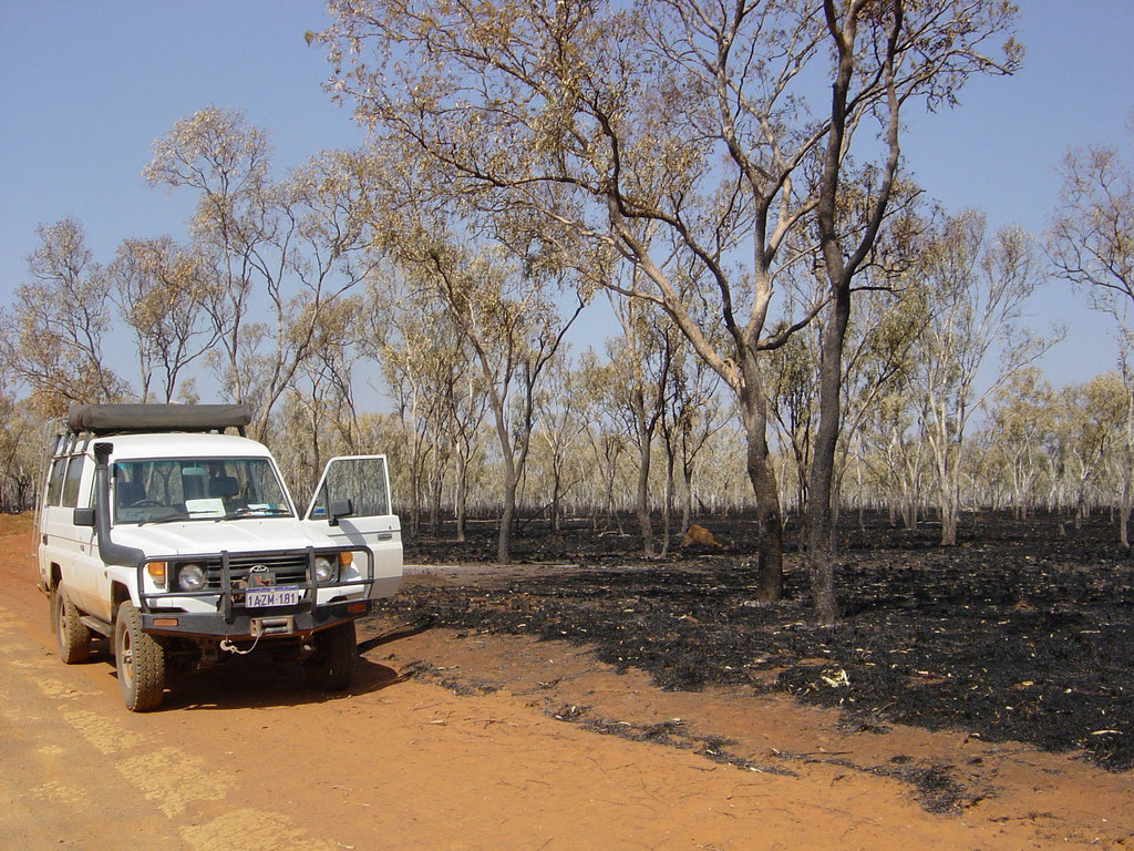 Bushbrand in der Gibb River Road