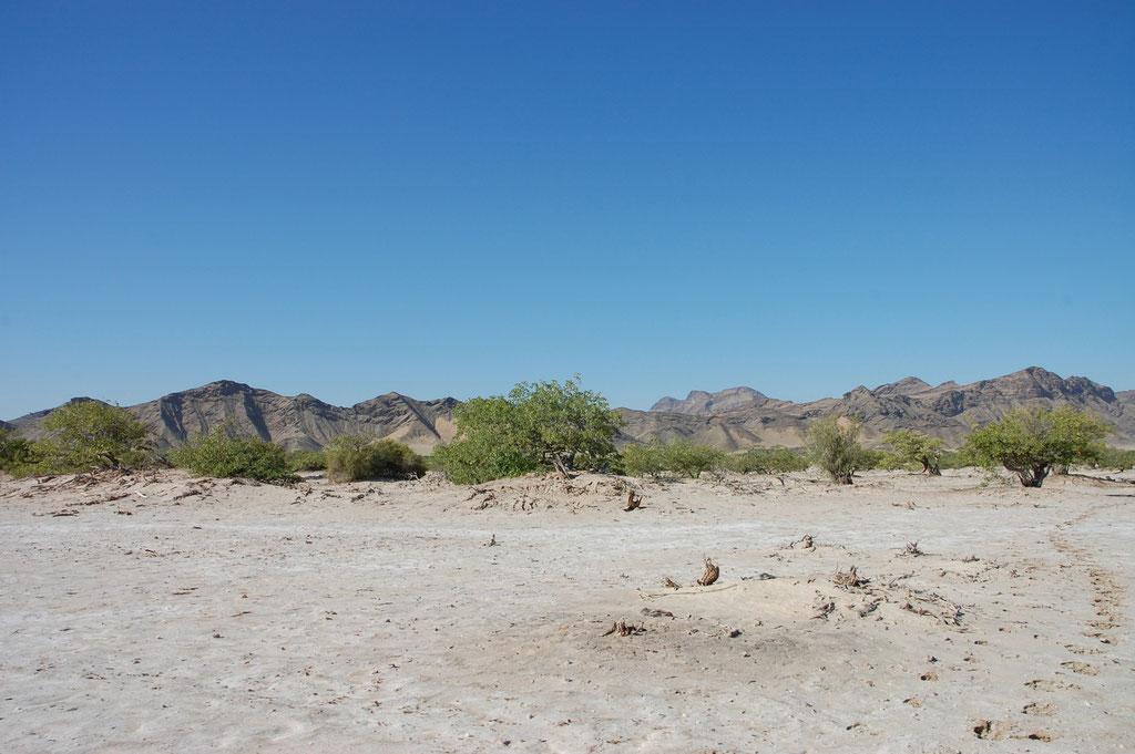 Der Hoanib River ist nur befahrbar wenn er kein Wasser führt.