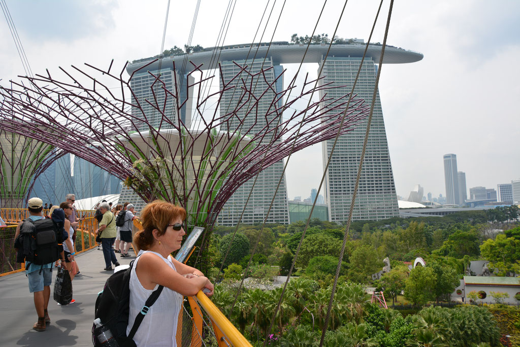 GARDEN OF THE BAY MIT SICHT AUF DAS MARINA BAY SANDS HOTEL