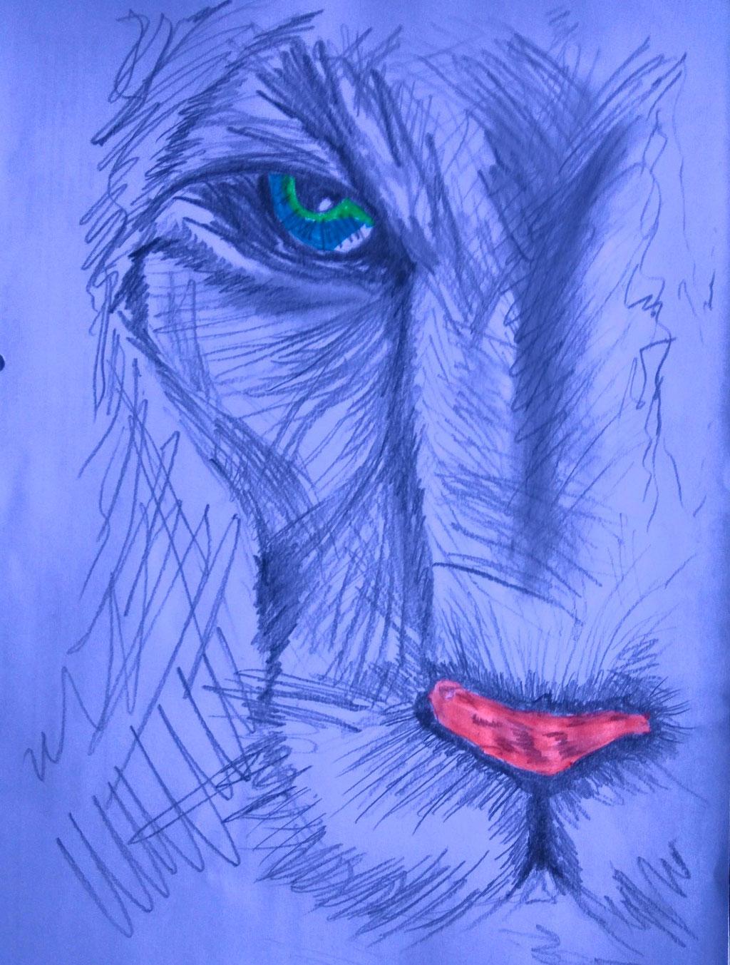 Bleistiftzeichnung DIN A4