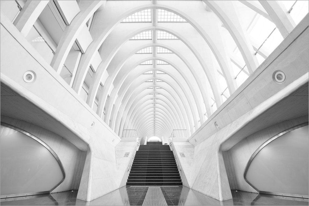 """Architektur im Bahnhof """"Liège-Guillemins"""" in Lüttich, Belgien   © Oliver Jerneizig"""