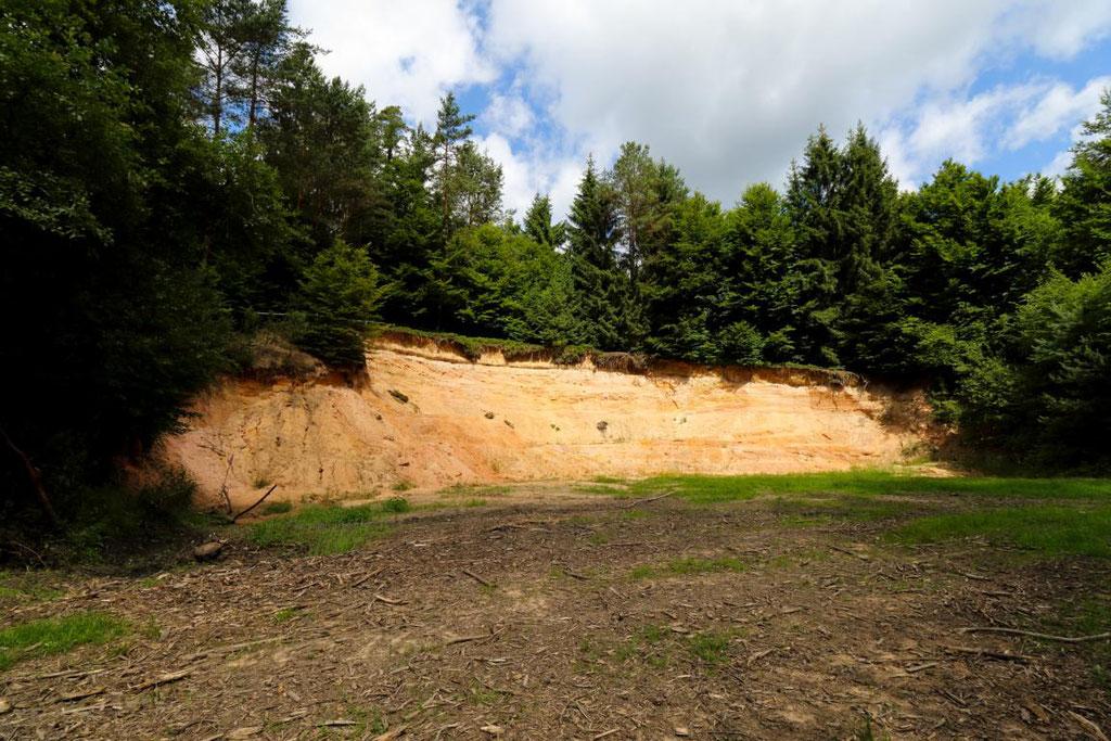 Sandbruch im Burgwald