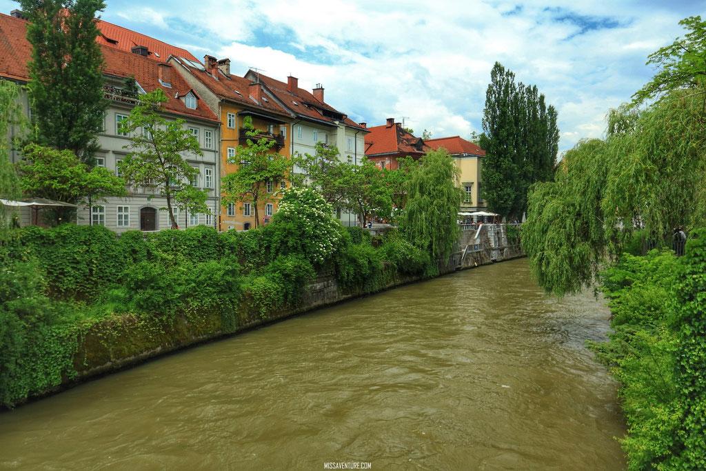 Au bord de la Ljubljanica.