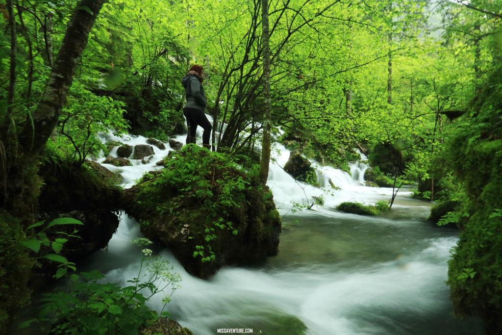 La vallée de Kamniska.