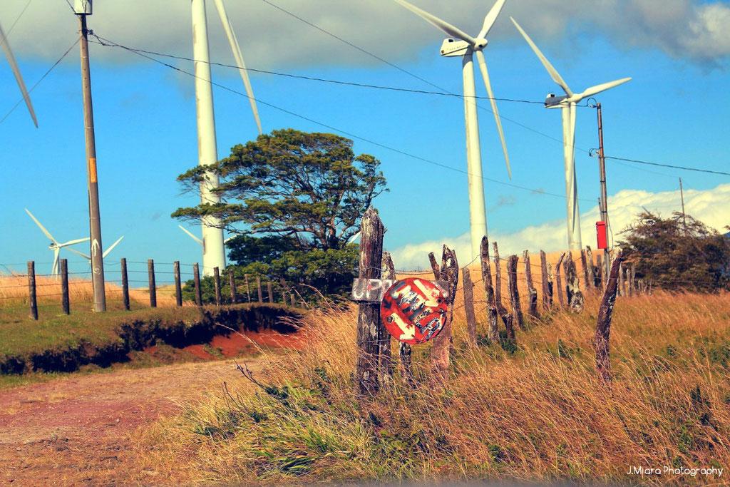 Hors des sentiers battus, sur la route, RIO CELESTE