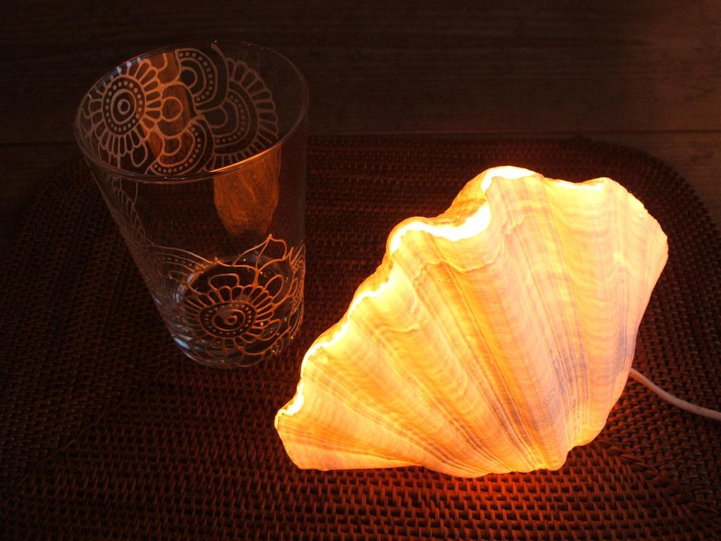 シャコ貝のランプ