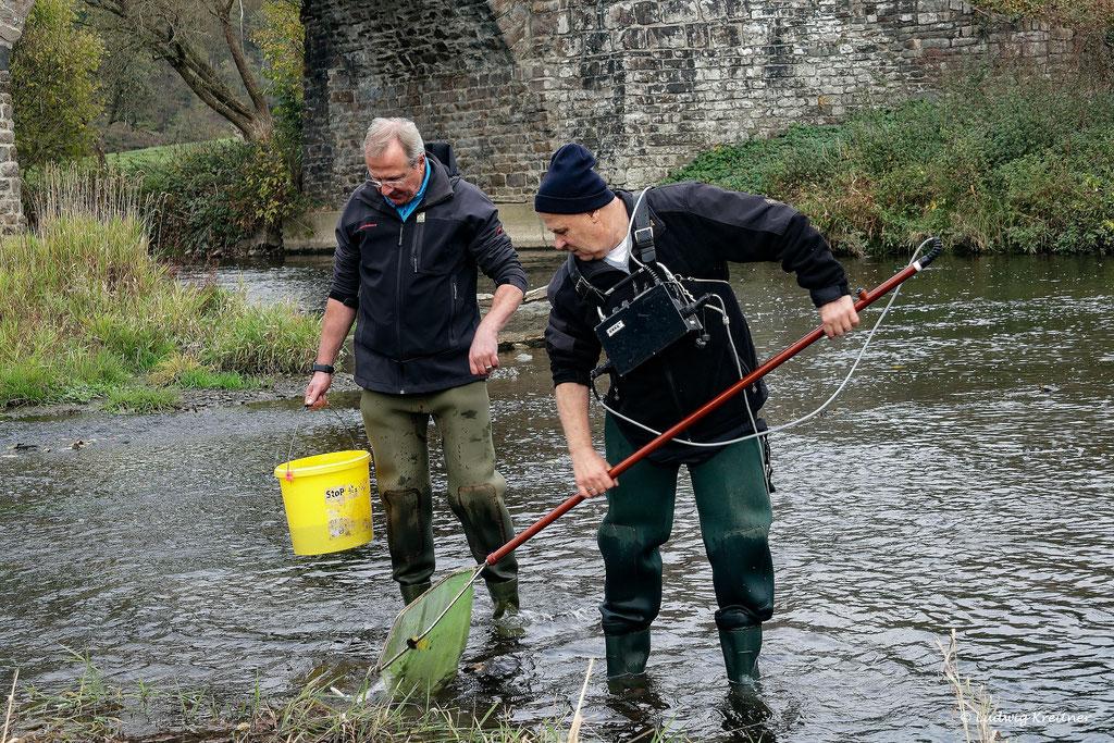Rainer und Manfred bei der Elektrobefischung