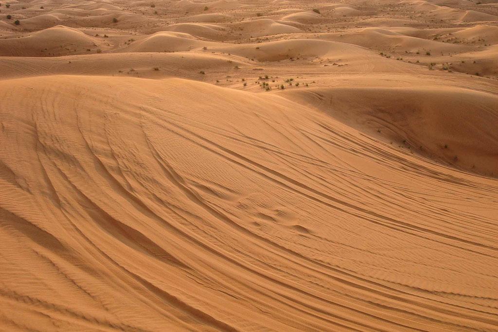 Wüstensafari/Desert safari, Dubai (UAE)