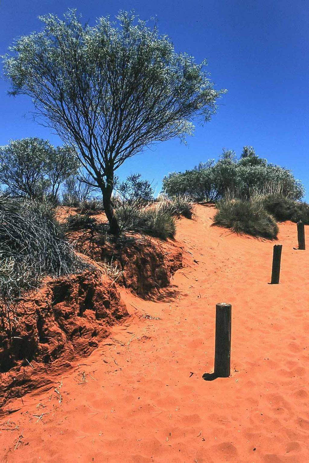 Alice Springs (AUS)