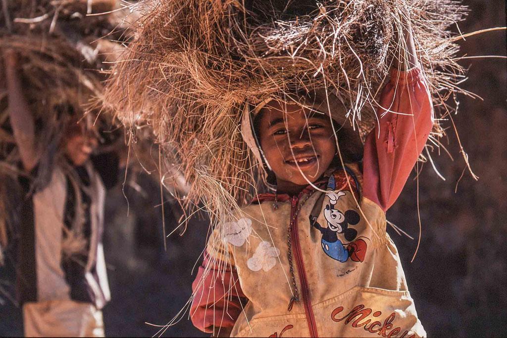 Raffiasammler/Raffia collector, bei/near Antananariva, Madagascar