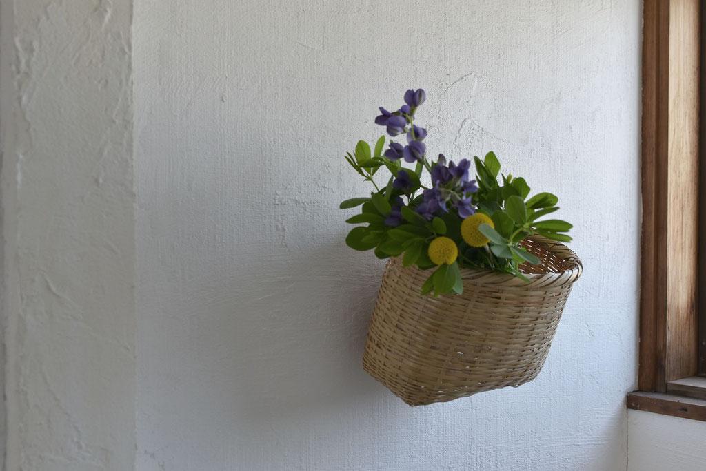 壁に季節の草花で清々しさを