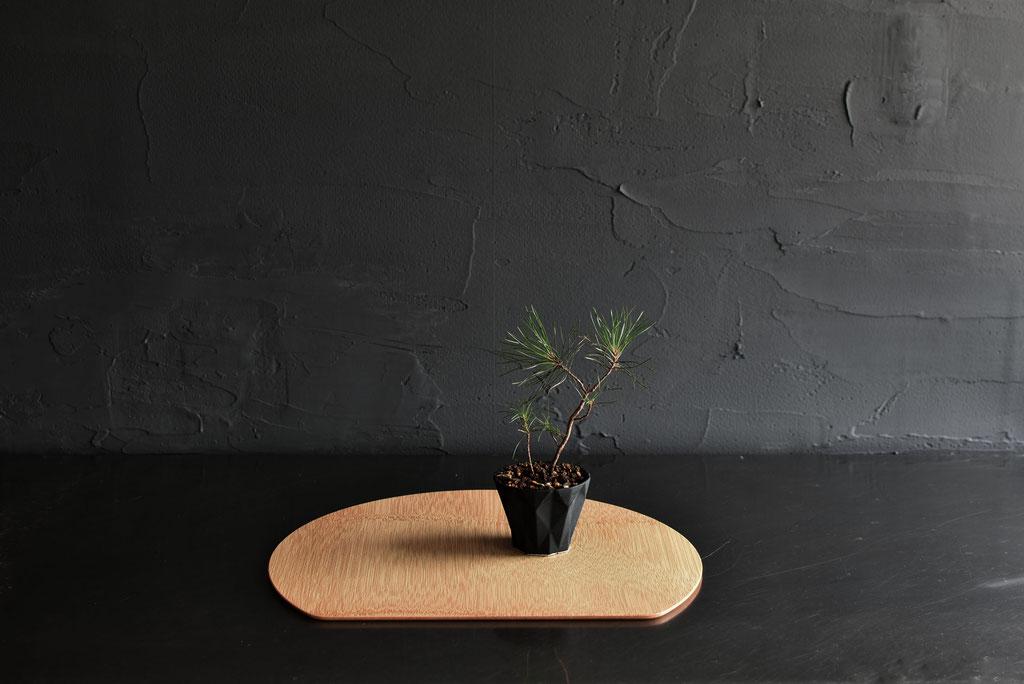 ミニ盆栽を竹の半月マットに
