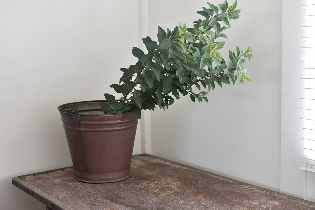 経年変化でいい風合いの銅のバケツに枝モノざっくり