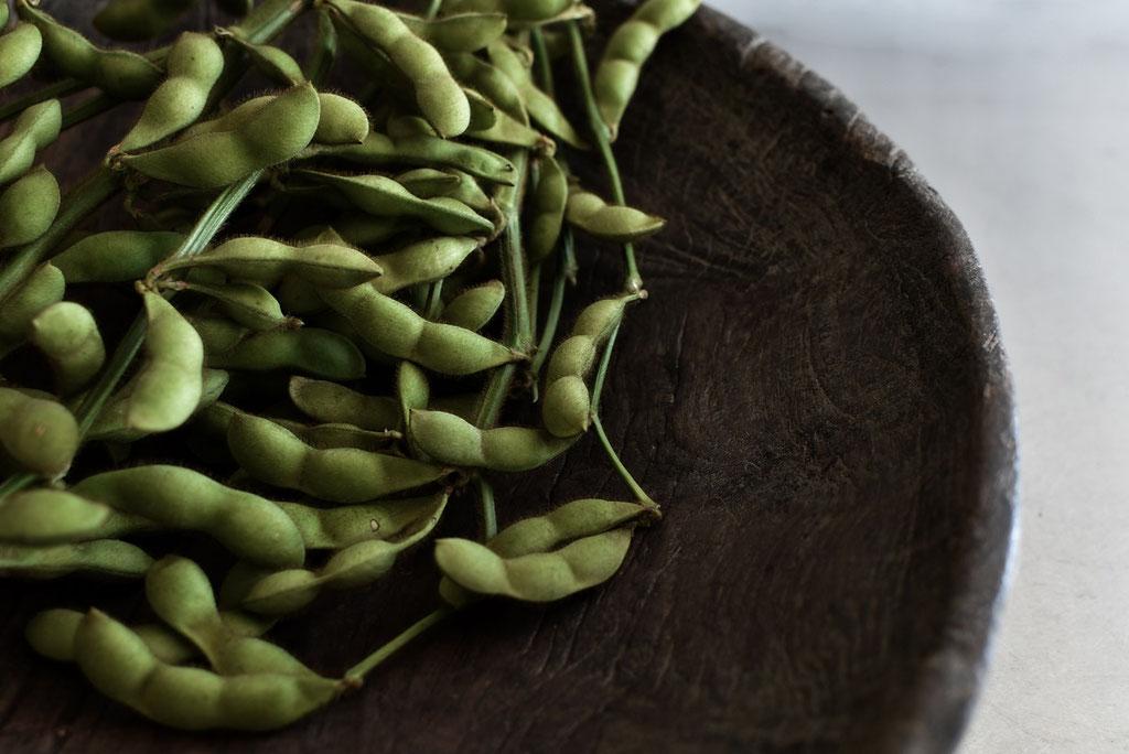 枝付きの新鮮な黒枝豆