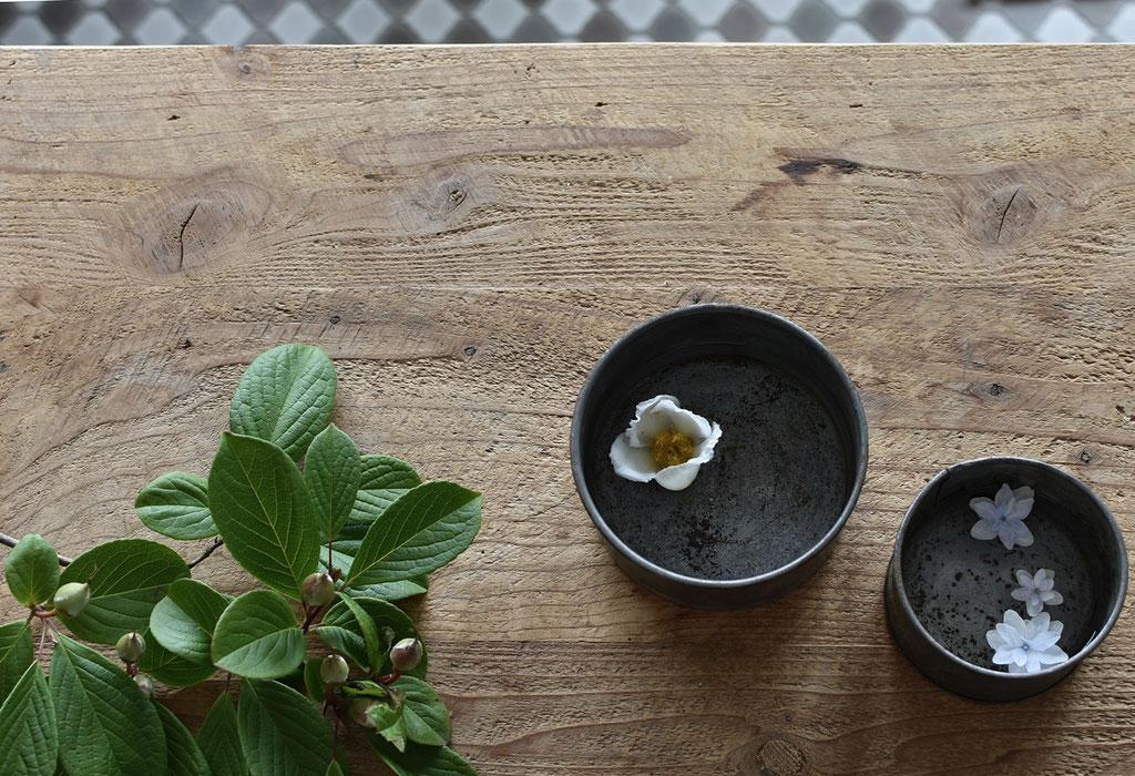 ブリキ缶に水を張ってお花を愛しむ