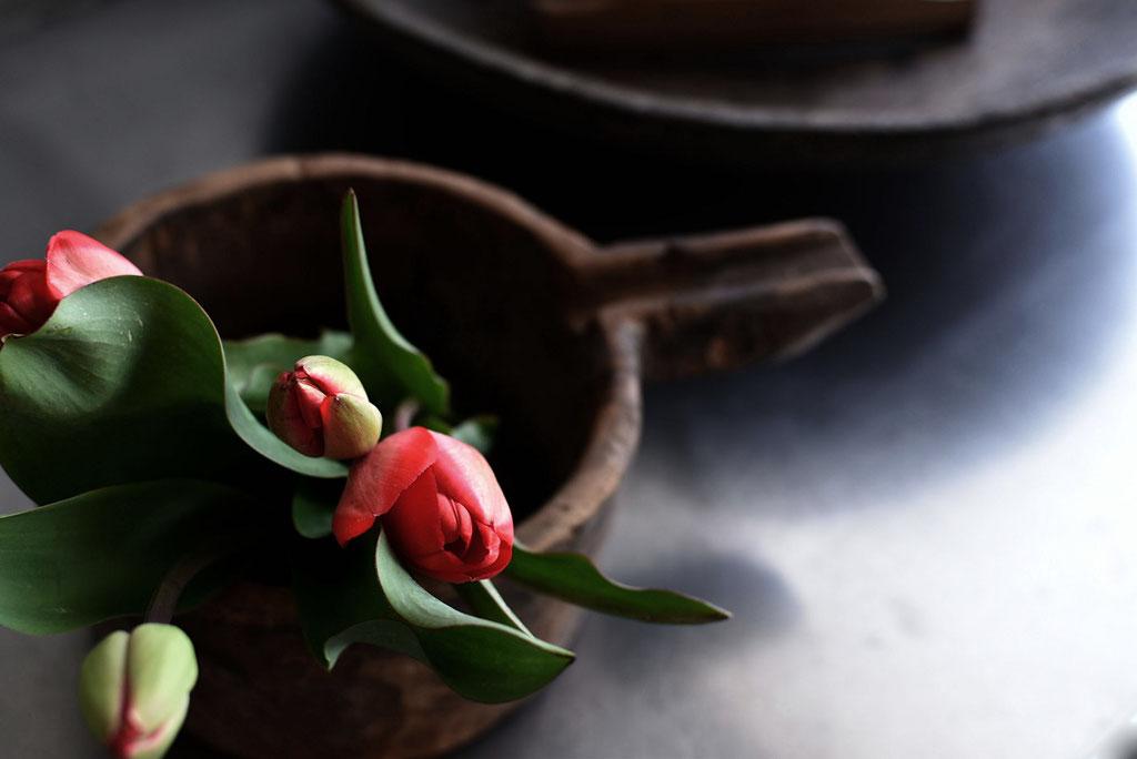 古い木鉢と赤のチューリップがとってもお似合い