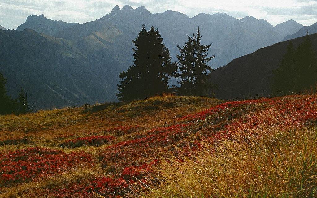 Der Allgäuer Hauptkamm mit Kratzer, Trettachspitze, Mädelegabel, Hochfrottspitze bis zum Biberkopf
