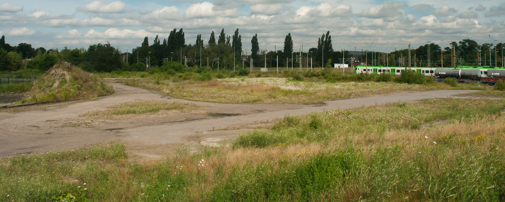 Verlorenes Paradies: In diesen Bereich entsteht eine Lokomotivenwaschanlange.