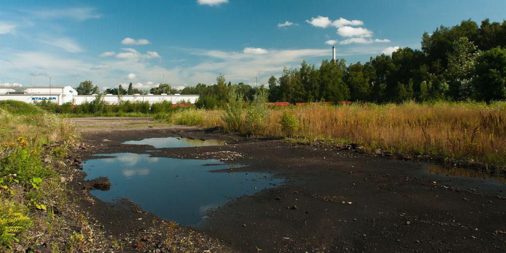 Nach Ende der Regenfälle versickert das Wasser langsam im Untergrund. Unversiegelter Boden kann viel Wasser aufnehmen und reduziert die Gefahr von Flutwassern, die die Kanalisation überlasten.