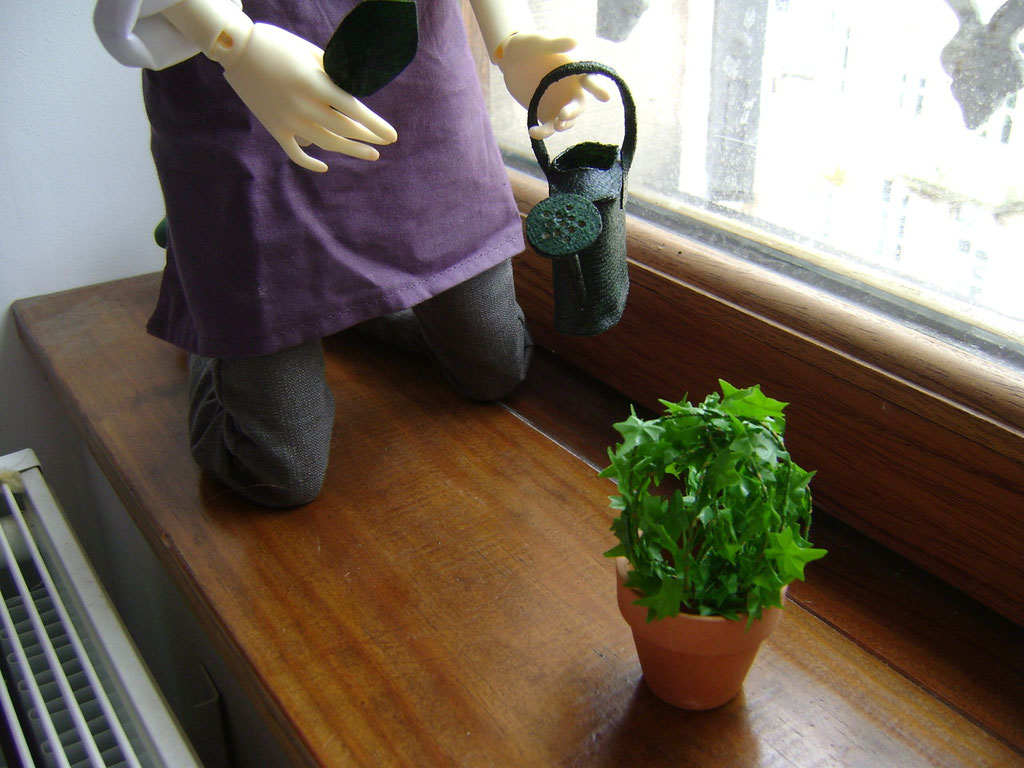 Gardening kit display with topiary