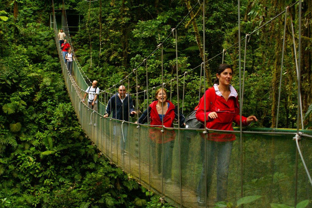 Puente Colgante  - Ama Extreme Canopy Tour