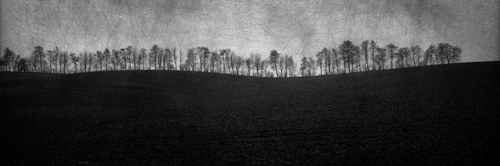 Environs d'Albert, Somme - Mnémosis series by Philippe Bréson