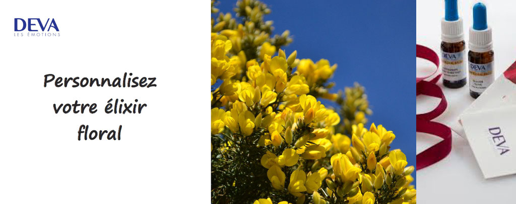 laboratoire deva, personnalisation elixir floral