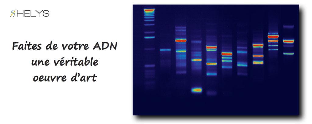 Helys, faites de votre ADN une oeuvre d'art - personnalisation d'ADN et empreintes digitales en un tableau, toile, oeuvre d'art.