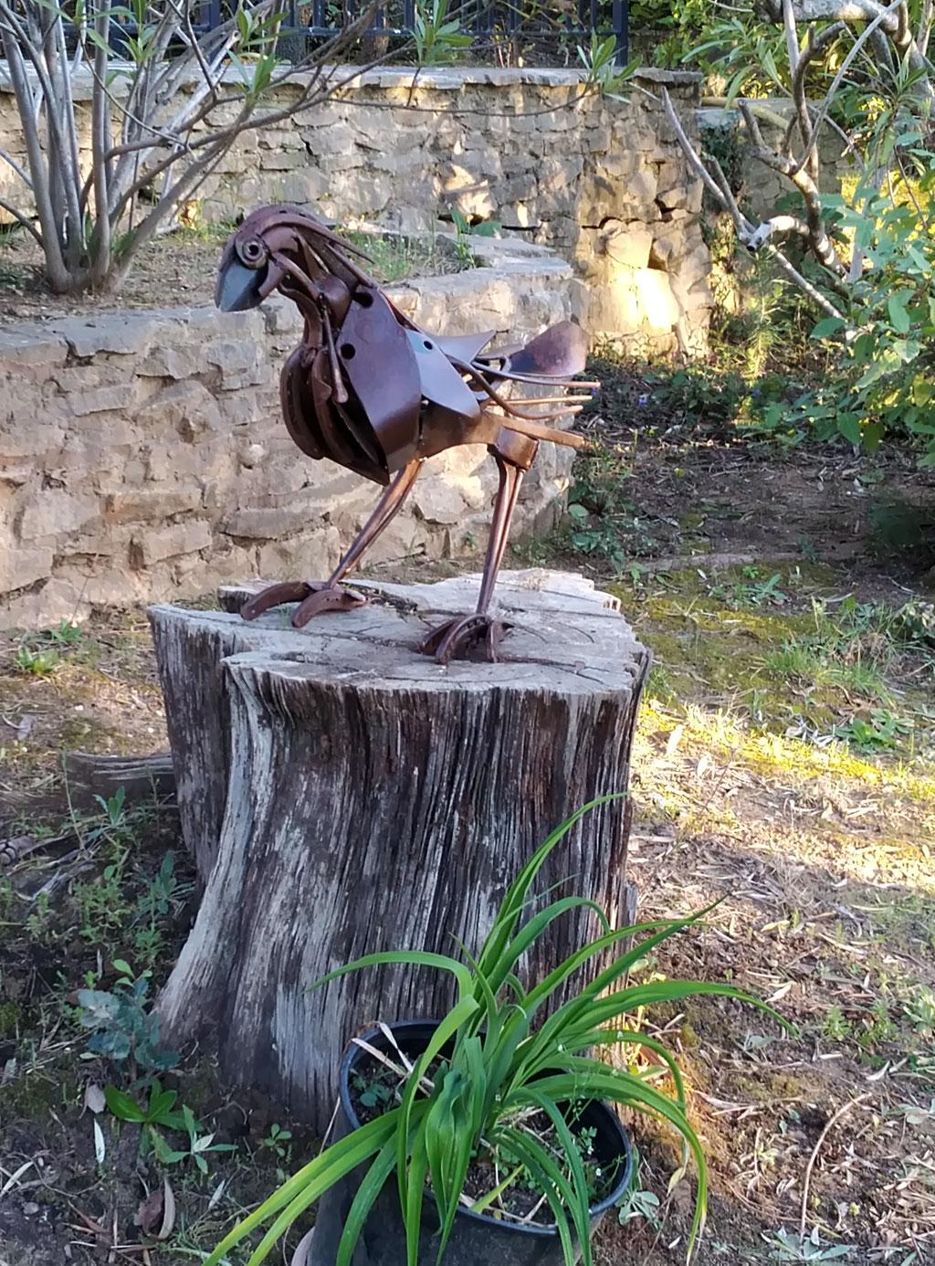Oiseau indisponible