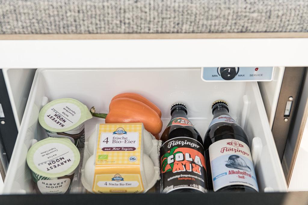 integrierter Kühlschrank mit Platz für alles was Camper brauchen