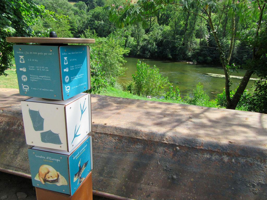 panneaux pédagogiques, ludique, pivotant, patrimoine,  biodiversité, cubes, illustrations