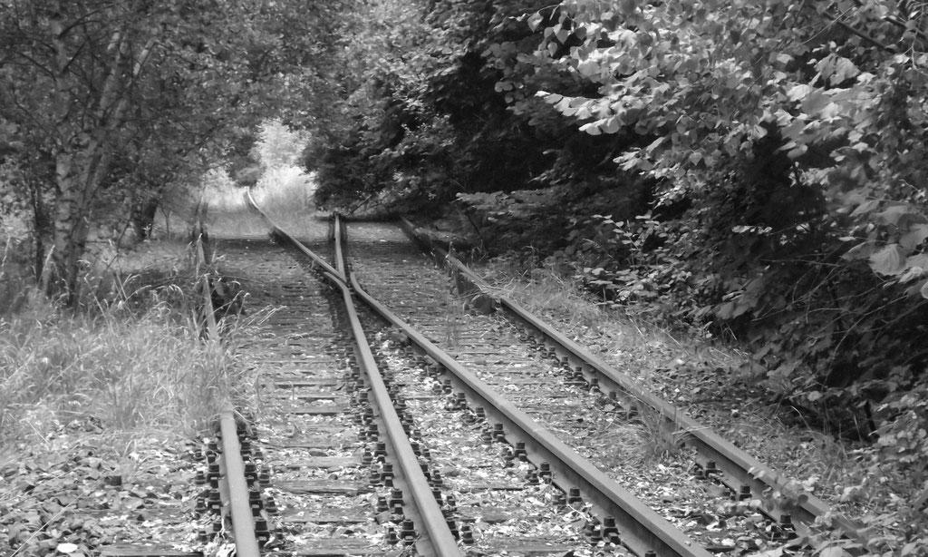 Bahnschienen - seit 1998 unbenutzt