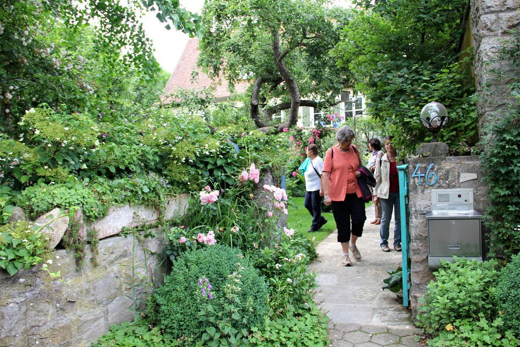 Am Nachmittag dann bei Frau Rau in ihrem Garten bekamen wir dann endlich Sonne und konnten den Nachmittagskaffe geniesen