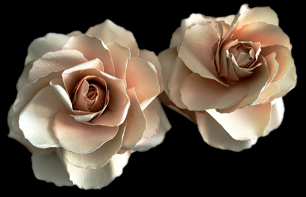 gardenie in carta, fermacapelli e boutonnieres